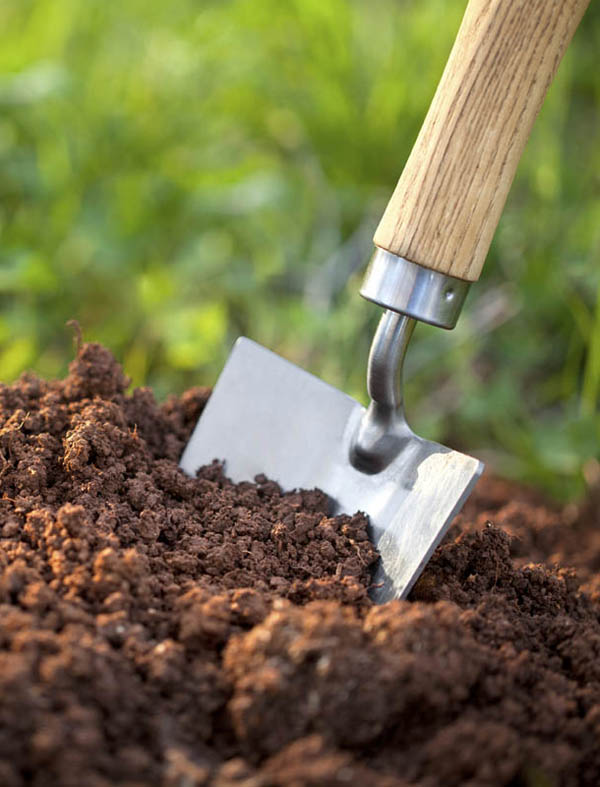 services trowel in dirt