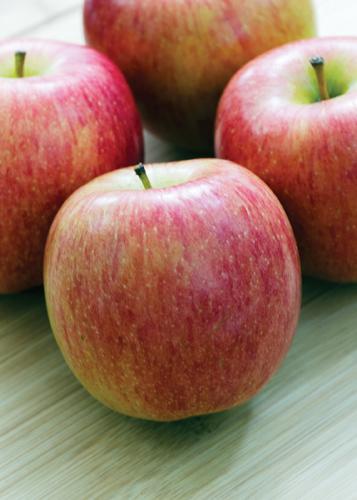 Norkent Apple Fruit Close Up