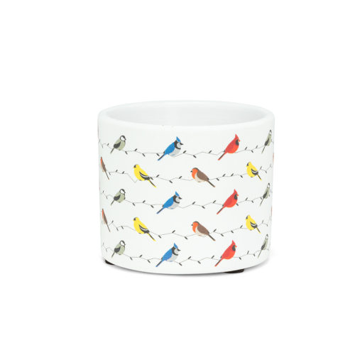 Abbott Extra Small Multi Birds Pot
