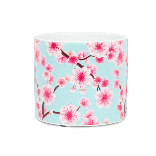 Abbott Small Cherry Blossom Pot