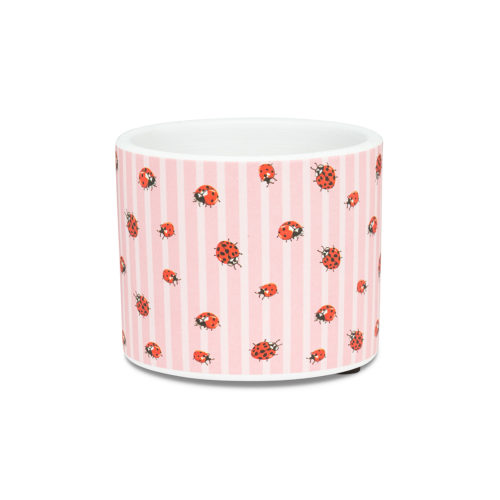 Abbott Decor Extra Small Ladybug & Stripe Pot