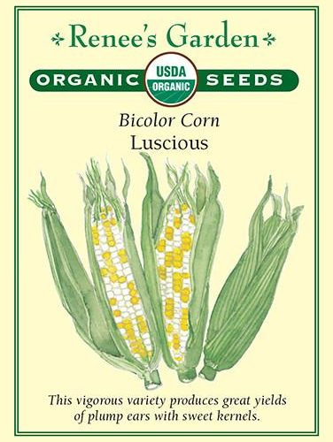 Bicolor Corn Luscious pack