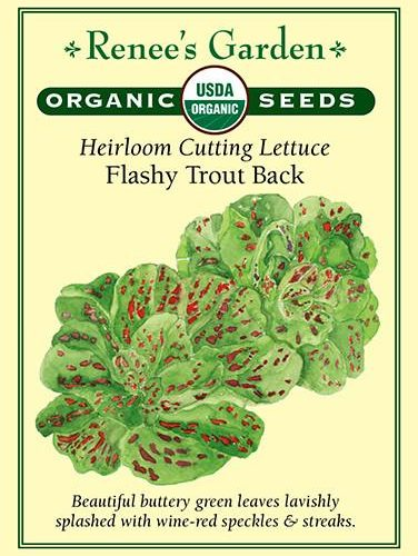 Heirloom Cutting Lettuce Flashy Trout Back pack