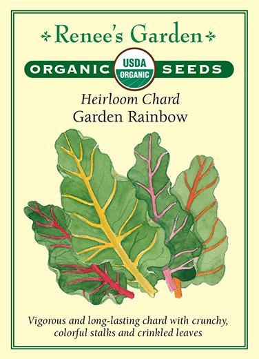 Heirloom Chard Garden Rainbow pack