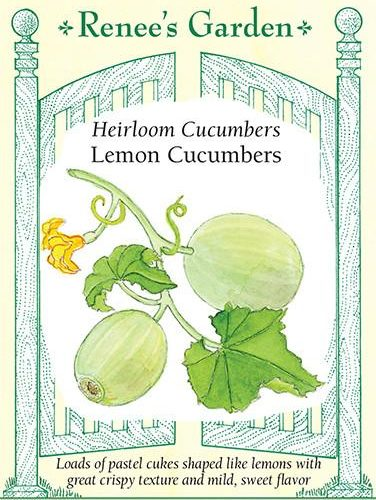 Heirloom Cucumbers Lemon Cucumbers pack