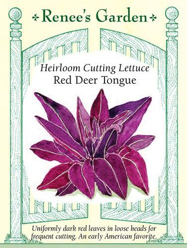 Heirloom Cutting Lettuce Red Deer Tongue pack