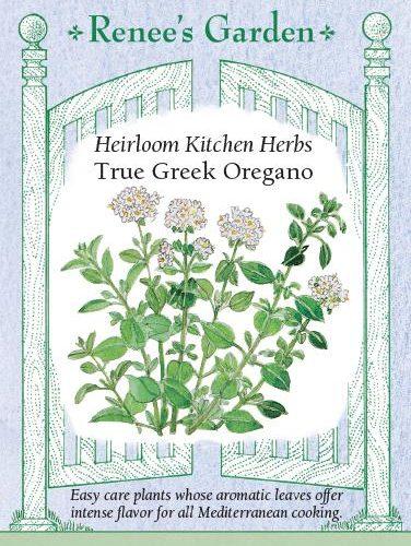 Heirloom Kitchen Herbs True Greek Oregano pack