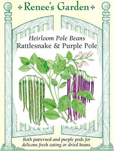 Heirloom Pole Beans Rattlesnake and Purple Pole pack