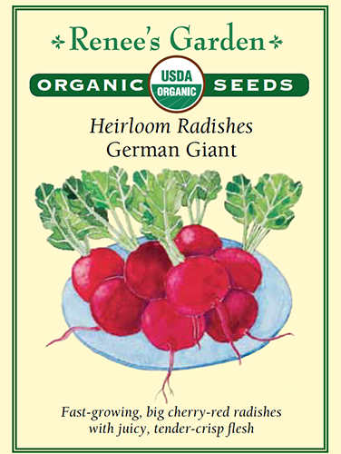 Heirloom Radishes German Giant pack
