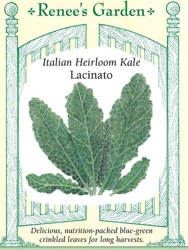 Italian Heirloom Kale Lacinato pack