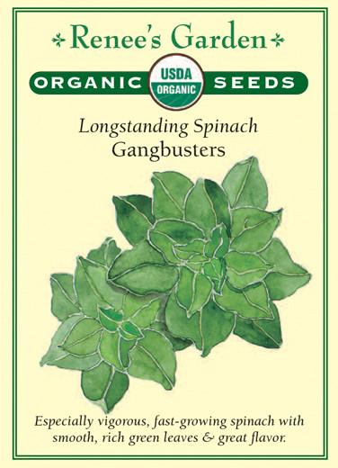 Longstanding Spinach Gangbusters pack