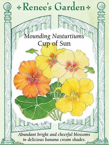 Mounding Nasturtiums Cup of Sun