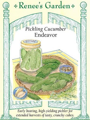 Pickling Cucumber Endeavor pack