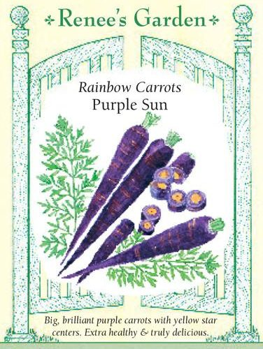 Rainbow Carrots Purple Sun pack