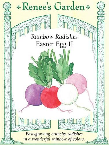 Rainbow Radishes Easter Egg 2 pack