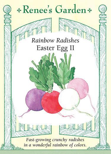 Rainbow Radishes Easter Egg 2 pack