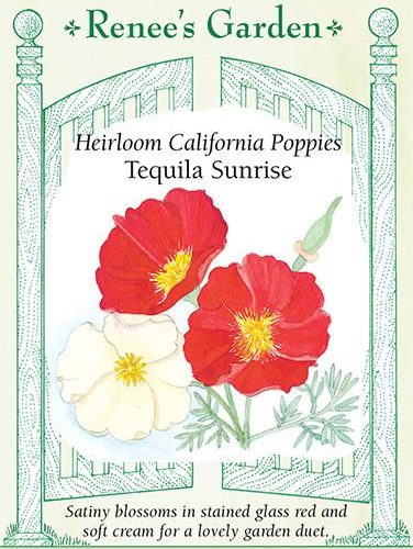Heirloom California Poppies Tequila Sunrise pack