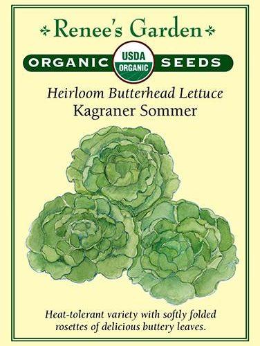 Heirloom Butterhead Lettuce Kagraner Sommer pack