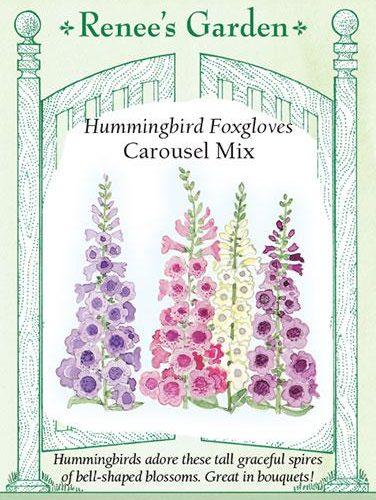 Hummingbird Foxgloves carousel mix
