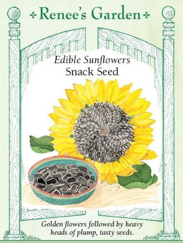 Edible Sunflowers Snack Seed