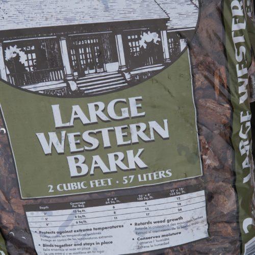 Large Western Bark