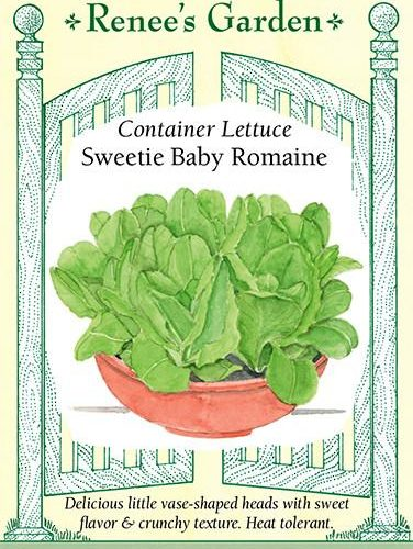 Container Lettuce Sweetie Baby Romaine