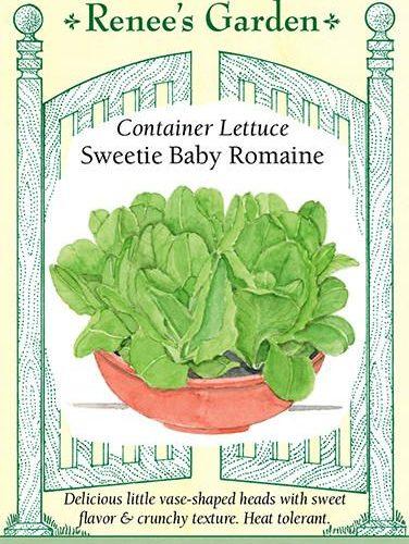 Container Lettuce Sweetie Baby Romaine
