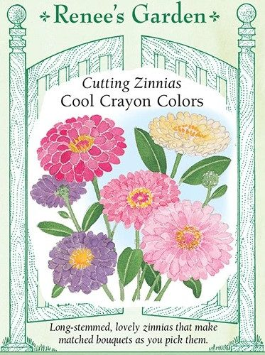 Cutting Zinnias Cool Crayon Colors