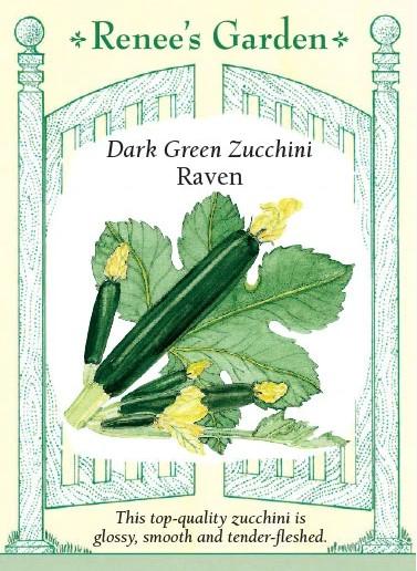 Dark Green Zucchini Raven
