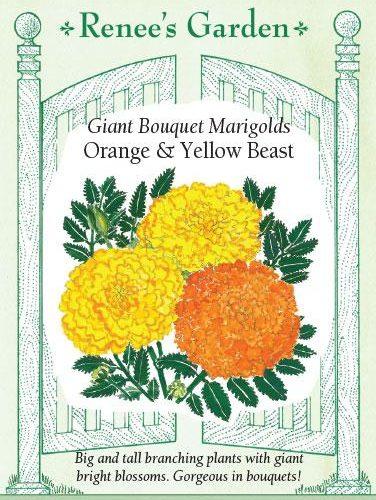 Giant Bouquet Marigolds