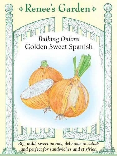 Golden Sweet Spanish