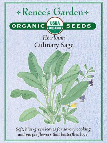 Heirloom Culinary Sage