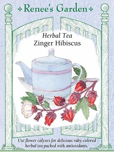 Herval Tea Zinger Hibicus