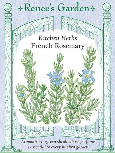 Kitchen Herbs French Rosemary