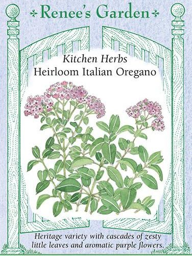 Kitchen Herbs Heirloom Italian Oregano