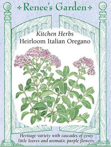 Kitchen Herbs Heirloom Italian Oregano