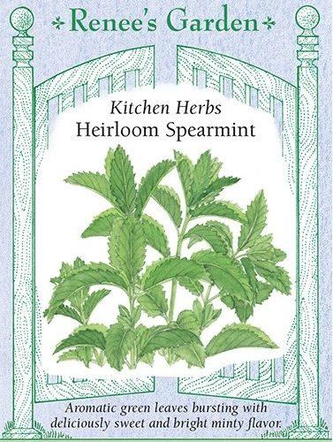 Kitchen Herbs Heirloom Spearmint