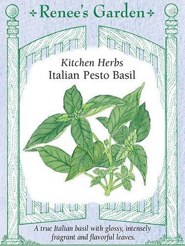 Kitchen Herbs Italian Pesto Basil