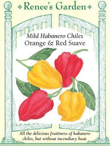Mild Habanero Chiles Orange & Red Suave