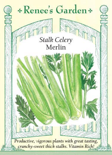Stalk Celery Merlin
