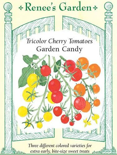 Tricolor Cherry Tomatoes Garden Candy