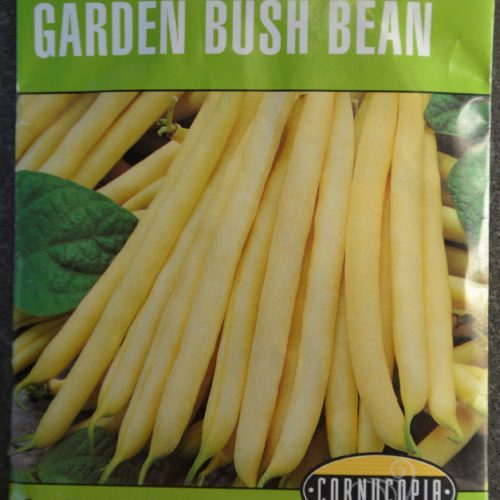 Garden Bush Bean Gold Rush