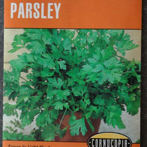Parsley Heirloom Italian Flat Leaf