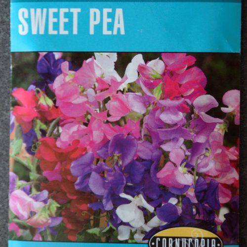 Sweet Pea Knee-Hi Mixed Colors