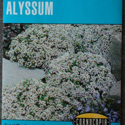 Alyssum Heirloom Carpet of Snow