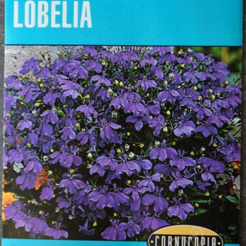 Lobelia Crystal Palace