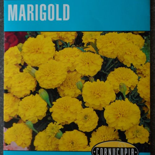 Marigold Lemondrop