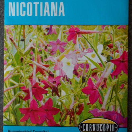 Nicotiana Knee-High Sensation Mix